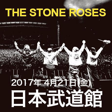 roses460